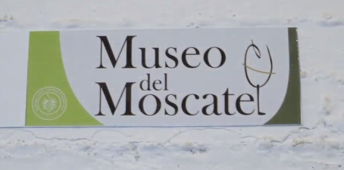 Museo moscatel chipiona